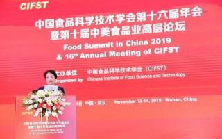 中国食品科学技术学会理事长孟素荷教授致辞