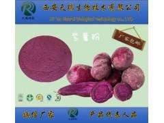 紫薯粉紫薯浓缩提取粉固体饮料原料