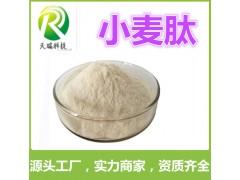 小麦低聚肽食品原料