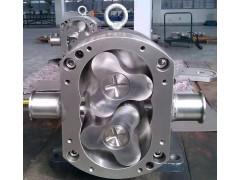 上黑宁能2019新型凸轮式转子泵