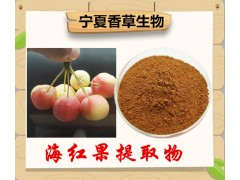 海红子提取物厂家供应楸子提取多糖 海棠果提取液 流体浸膏批发