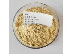 藜麦提取物厂家直销 藜麦皂苷5%含量 藜麦浓缩粉批发价