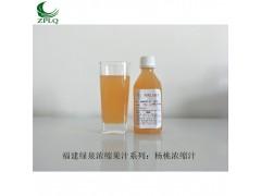 供应优质浓缩果汁发酵果汁果蔬汁浆杨桃浓缩汁厂长直销