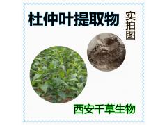 杜仲叶提取物低温烘焙干燥 实力厂家生产定做杜仲叶浓缩浸膏