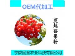 蔓越莓果汁粉饮品 蔓越莓粉固体饮料 宁陕国圣代加工