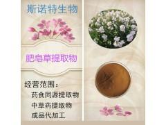 肥皂草提取物 肥皂草粉 厂家现货  石碱花粉