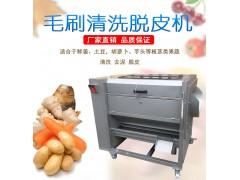 九盈土豆去皮机 毛刷清洗脱皮设备 可拆卸清洗芋头机