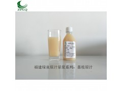 供应优质浓缩果汁发酵果汁原汁原浆荔枝原汁厂家直销
