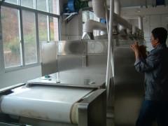 微波熟化设备 微波熟化设备参数 微波熟化设备工艺