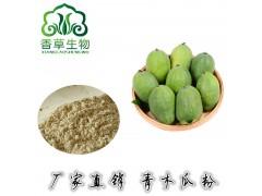 青木瓜粉批发 番木瓜提取物 海南木瓜汁粉浓缩粉供应