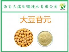 大豆苷元 大豆甙元≥98% 大豆提取物