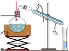常规理化检测 诺安实力可 梅里埃营养科学