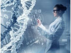 用菌株鉴定及全基因组测序溯源产品安全和腐败风险