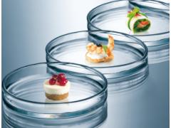 微生物挑战性实验 梅里埃营养科学 食品科学中心