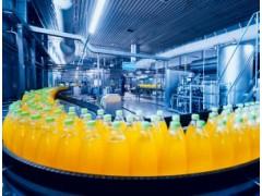 产品及工艺确认研究 食品科学中心 梅里埃营养科学