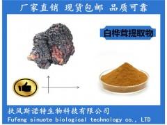 白桦茸提取物 白桦茸多糖30% 桦树茸粉