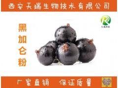 黑加仑果粉98% 黑加仑汁粉 速溶 黑加仑花青素