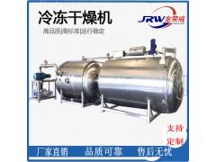 真空冻干机 10平方真空冻干机 生鱼片低温脱水冻干设备