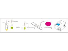 生物素荧光定量试纸条乳品及饮料加工企业