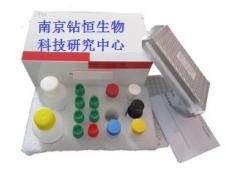 羊O型口蹄疫抗体(FMDV-O-Ab)酶联免疫试剂
