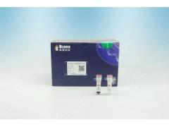 PCR产物纯化试剂(磁珠法)