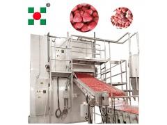 水果速冻设备 草莓速冻生产线 单冻速冻机