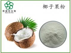 椰子果粉 喷雾干燥 椰子粉