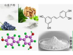白藜芦醇98%葡萄皮提取物---南京钻恒生物