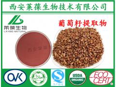 葡萄籽提取物,95%OPC,葡萄籽花青素,原花青素
