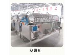 大洋牌滚筒式果蔬分级机 尺寸可定制的胡萝卜分选机
