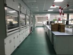 中山理化实验室配套通风柜排毒柜通风橱