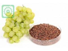 葡萄籽提取物   量大从优   包邮
