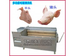 多功能猪脚猪头毛辊清洗机不锈钢商用去黑炭清洗设备