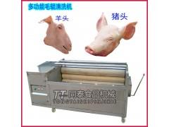 不锈钢猪头清洗机猪蹄清洗机猪耳朵清洗设备现货