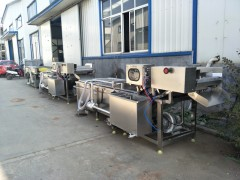 果蔬清洗脱水加工线设备厂家