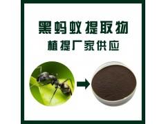 黑蚂蚁提取物 10:1/ 植物提取物 / 厂家直销