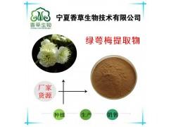 绿萼梅提取物 水溶绿萼梅粉厂家供应 绿梅花提取液 白梅花粉