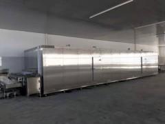 果蔬片速冻机厂家