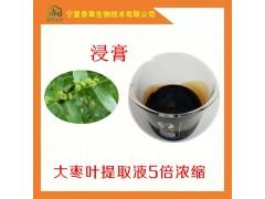 大枣叶提取液5倍浓缩 红枣叶浸膏红枣叶提取物红枣叶粉80目