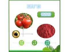 番茄提取物10:1包�]番茄粉番茄�t素多�格