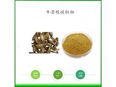 牛蒡根提取物1公斤起订生产厂家长期供应黑萝卜粉