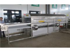 桃子清洗机加工设备厂家