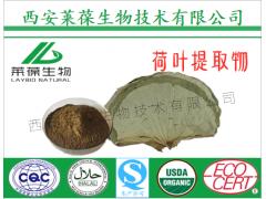 荷叶提取物,荷叶黄酮,荷叶生粉,荷叶粉,荷叶浓缩粉