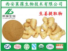 生姜提取物,姜辣素,20%姜辣素,生姜浓缩粉,生姜水溶粉